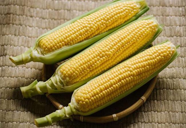 Hỏi đáp ăn bắp có giảm cân không? Ăn ngô cay, ngô luộc có béo không ?