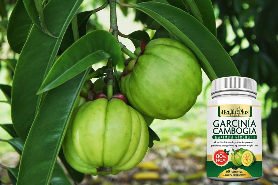 """Viên uống giảm cân Garcinia Cambogia có tốt như """"lời đồn"""""""